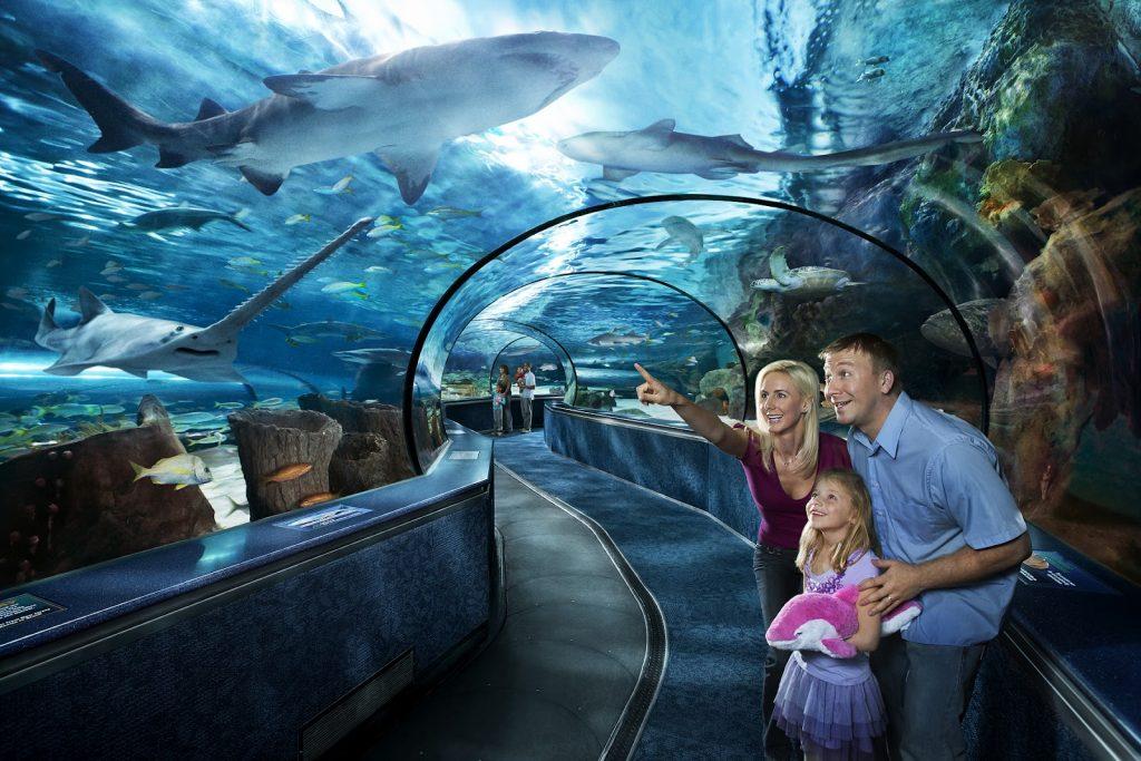 Морской аквариум океанариум в Анталии